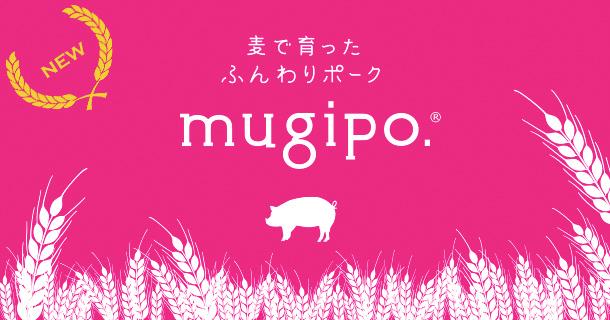 mugipo.トップバナー