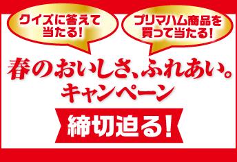 「東京ディズニーシー® 貸切プレシャスナイトご招待!春のおいしさ、ふれあい。キャンペーン」応募締切は4月20日(土)当日消印有効です。